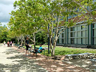 qut_c_campus1