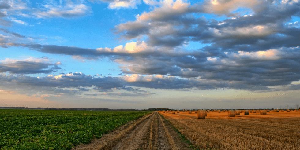 オーストラリア農業技術